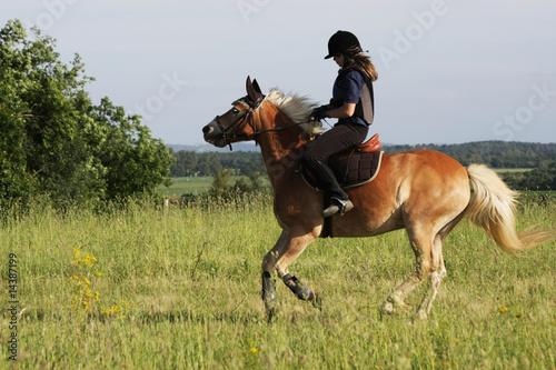 Fotografija Equitation en pleine nature