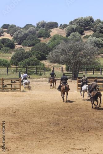 spanische reiter