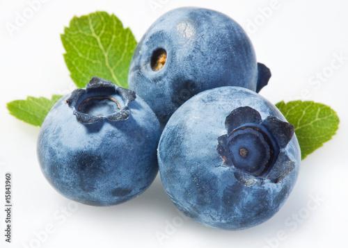 Bilberry on a white background Fototapeta