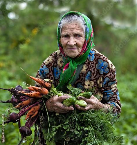 Slika na platnu Grandmother