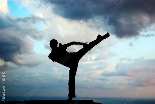 Canvas Print Kung fu at the edge