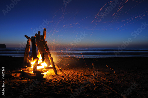 Slika na platnu Campfire on shi shi beach in Olympic national park