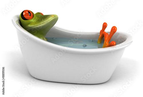 Fotografie, Obraz Grenouille dans son bain