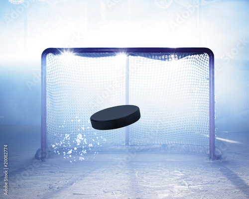 Canvas Print eishockey tor