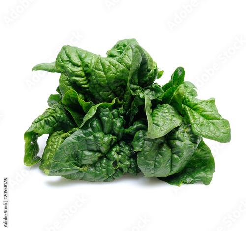 foglie di spinacio