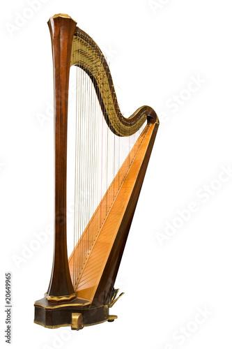 Canvas Print Harp