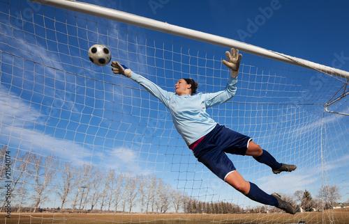 Cuadros en Lienzo Goalie