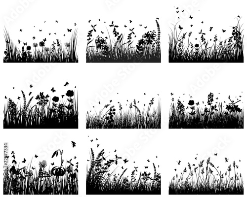 Obraz na płótnie meadow silhouettes
