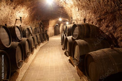 Stampa su Tela Corridor in winery