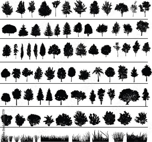 Tableau sur Toile Trees, Bushes, Grass