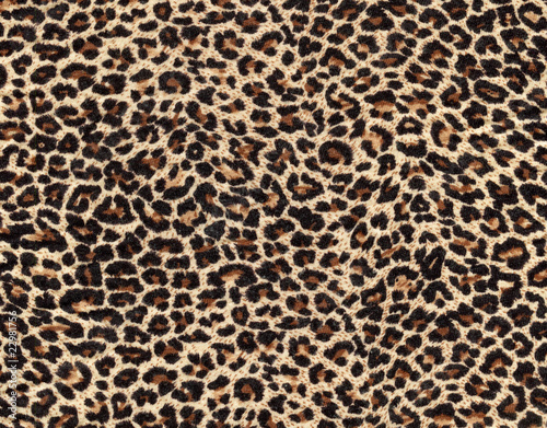 Photo leopard skin as background
