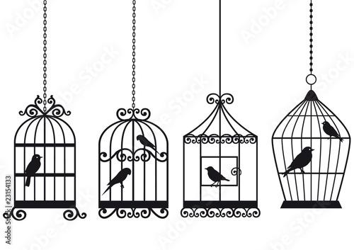 vintage birdcages with birds Fototapet