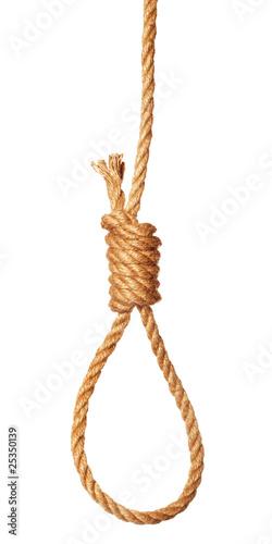 Slika na platnu noose isolated on white