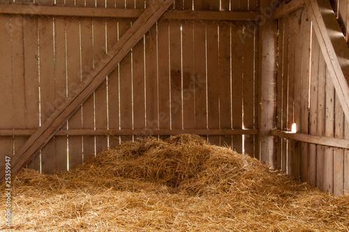 Obraz na plátně A day in the barn
