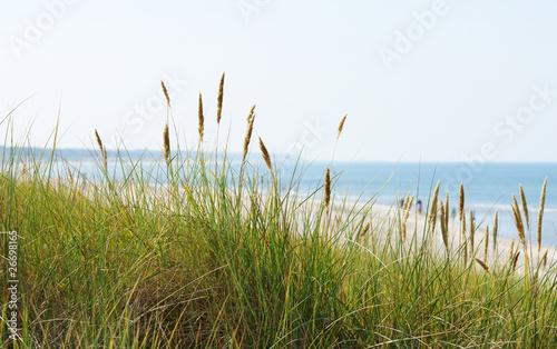 Panorama am Meer - At the Ocean #26698165
