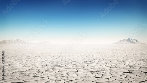 Canvas Print desert