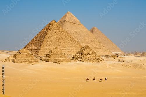 Fotografie, Obraz Camels Line Walk Pyramids All