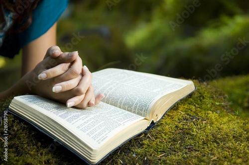 Stampa su Tela Young woman reading bible