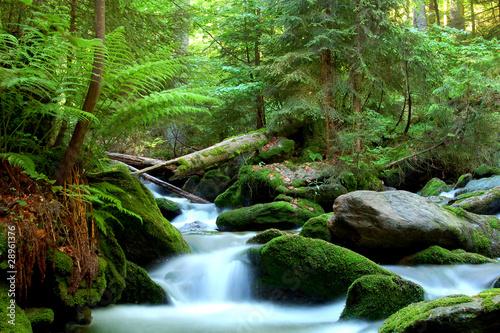 Waterfall in the national park Sumava-Czech Republic Fototapeta