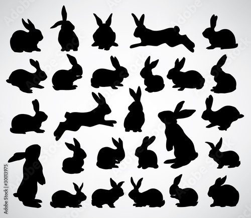 Leinwand Poster big collection of rabbit silhouettes