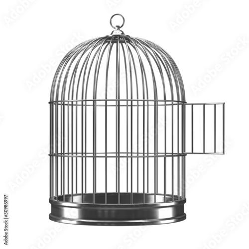 Fotografija 3d Silver bird cage with open door