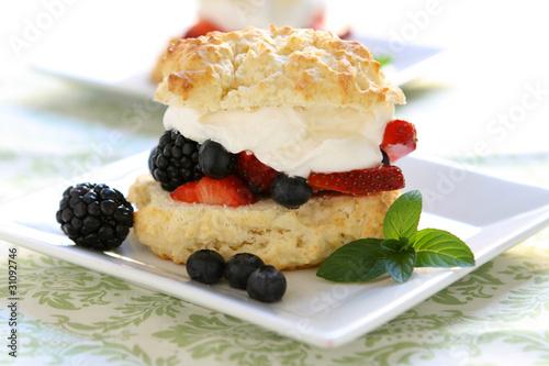 Vászonkép Mixed Berry Shortcake