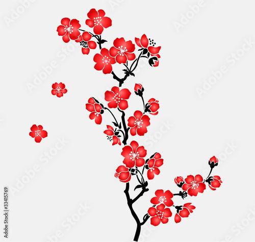 Cuadros en Lienzo A branch of blooming cherry tree Sakura