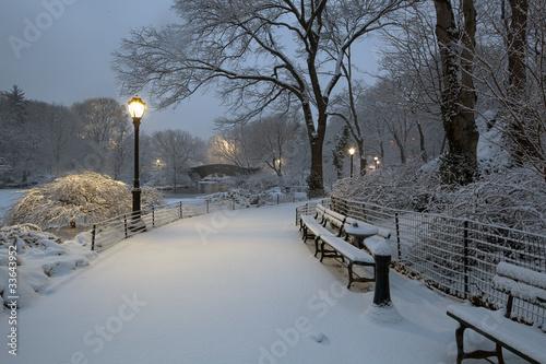 Fotografía Central Park in snow storm