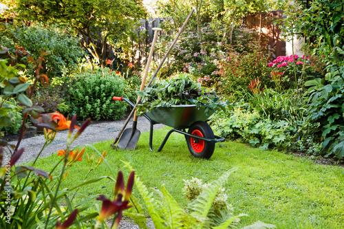 Valokuvatapetti Working with wheelbarrow  in the garden