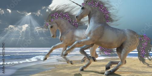 Playing Unicorns Part 2