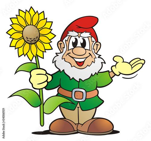 Fototapeta Garden Gnome with Sunflower