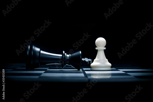 Canvastavla A pawn and the won king