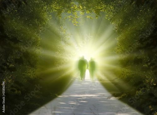 walk into light Fototapet
