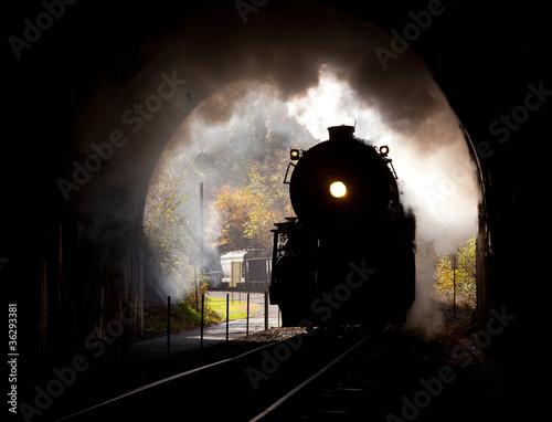 Fototapeta premium Lokomotywa parowa wchodzi do tunelu