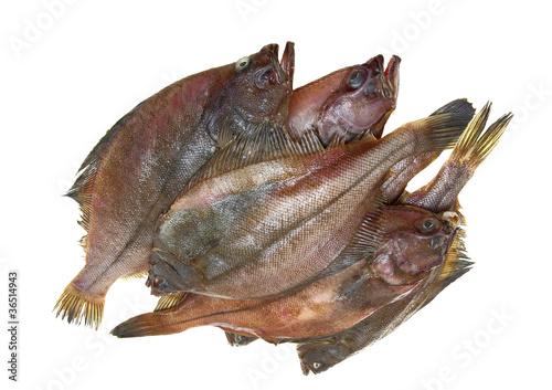 Canvas-taulu Four fresh flounder fishes