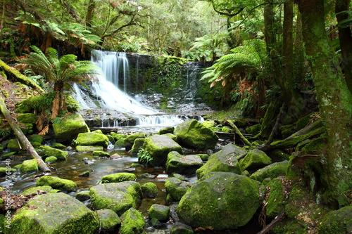 Canvas Print Gorgeous Russel Falls in Tasmania, Australia.