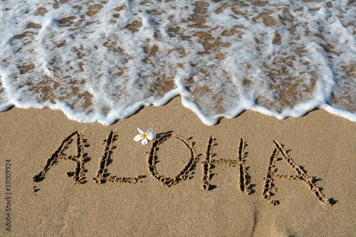 Stampa su Tela Aloha in Sand, Hawaii, USA