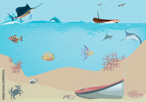 paesaggio sottomarino