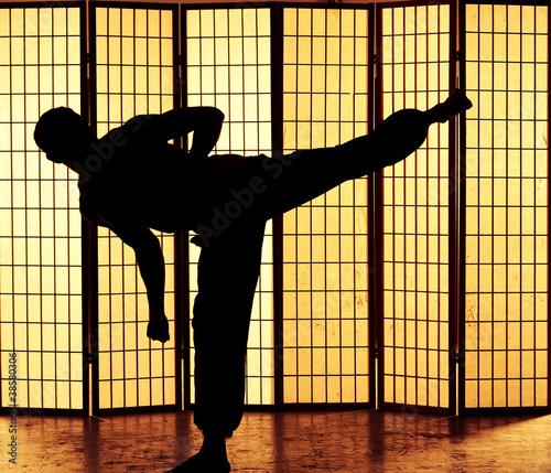 Canvas Print kung fu kick