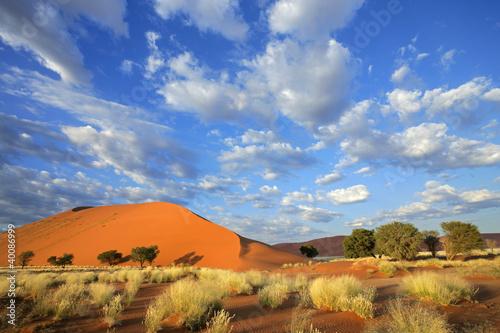 Stampa su Tela Desert landscape, Sossusvlei, Namibia