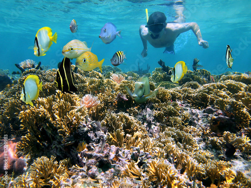 Obraz na płótnie Man snorkeling underwater on a shallow coral reef with tropical fish front of hi