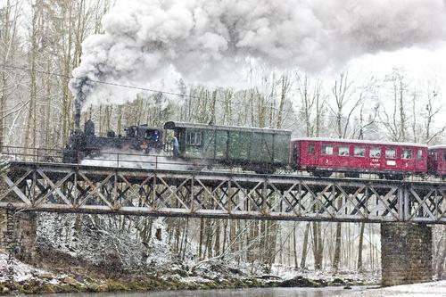 Fototapeta premium pociąg parowy w pobliżu Hradska w Czechach