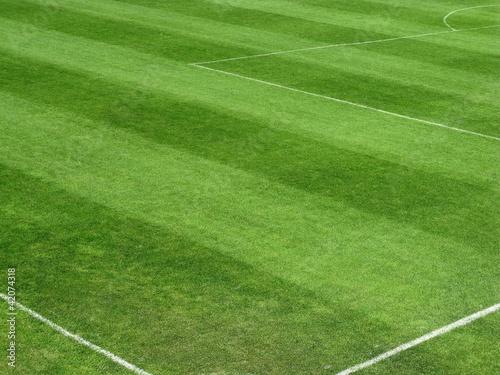 Fussballplatz - Rasen - Spielfeld фототапет