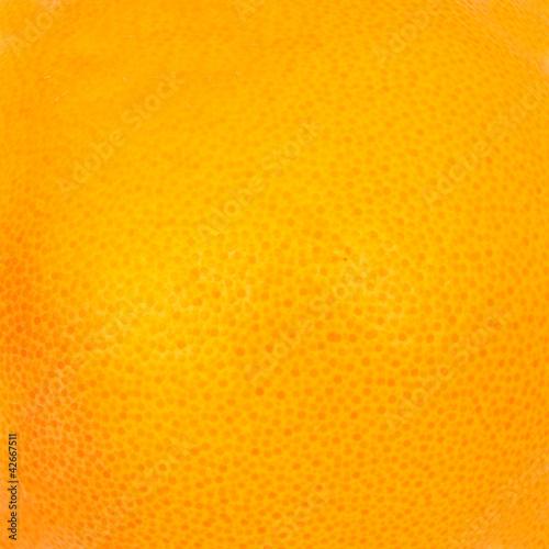 Macro photo of grapefruit texture