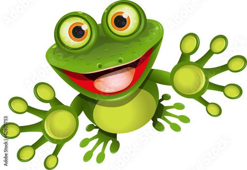 Canvas Print happy frog