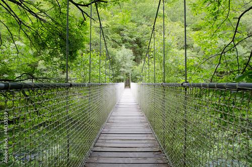 Fototapeta premium Most wiszący, most linowy