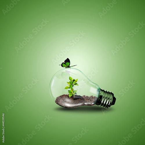 Obraz na plátně Electric light bulb and a plant inside it