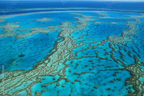 Grande Barriere de corail, Australie Poster Mural XXL