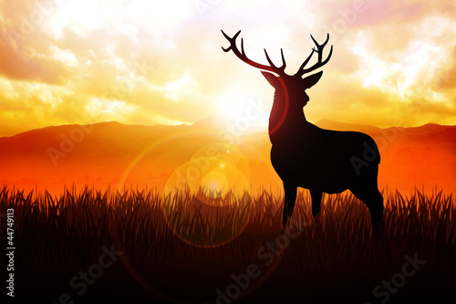 Wallpaper Mural Silhouette illustration of a deer on meadow during sunrise