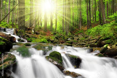 Vászonkép Waterfall in  National park Sumava Czech Republic